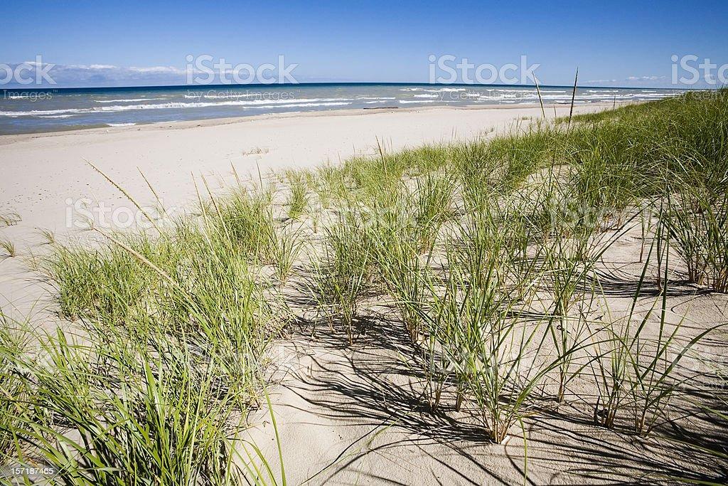 Grassy Sand Dunes and Lake Michigan stock photo