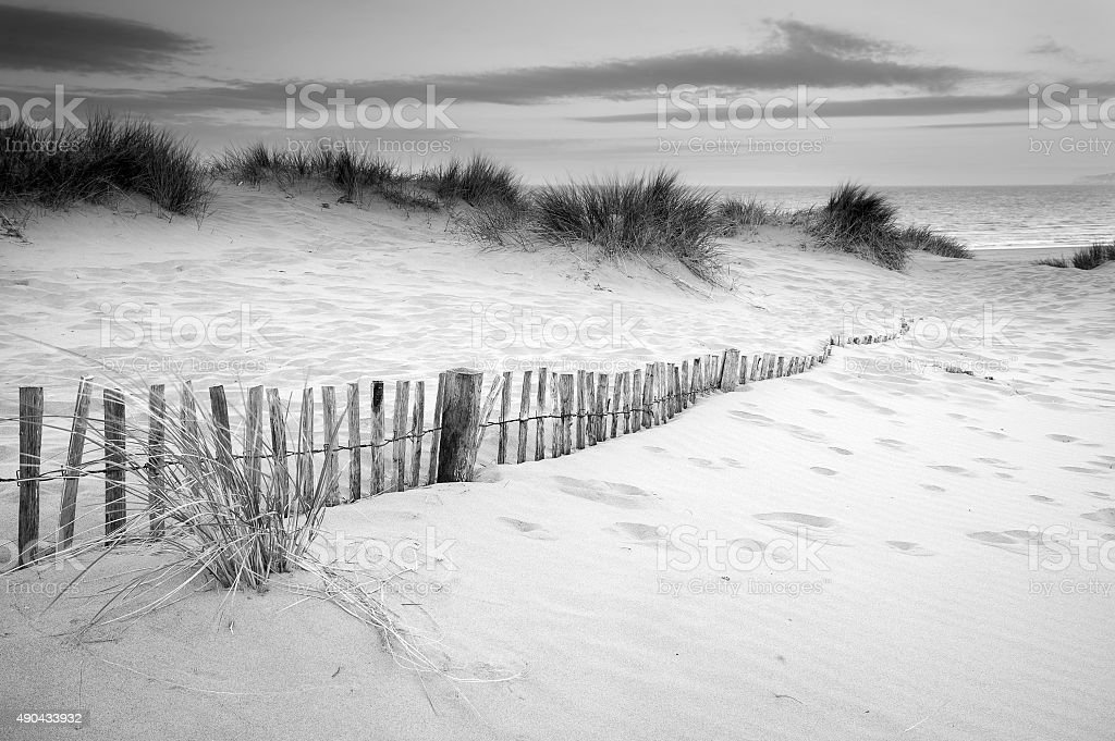 Grassy sand dunes landscape at sunrise in black and white stock photo