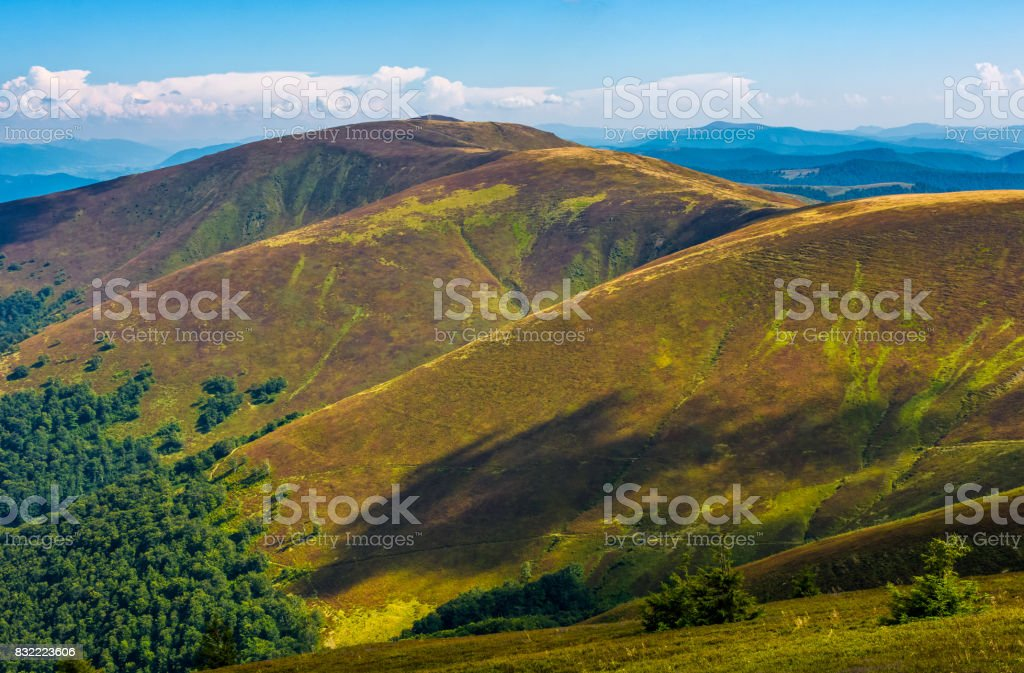 grassy slopes of Carpathian mountain ridge stock photo