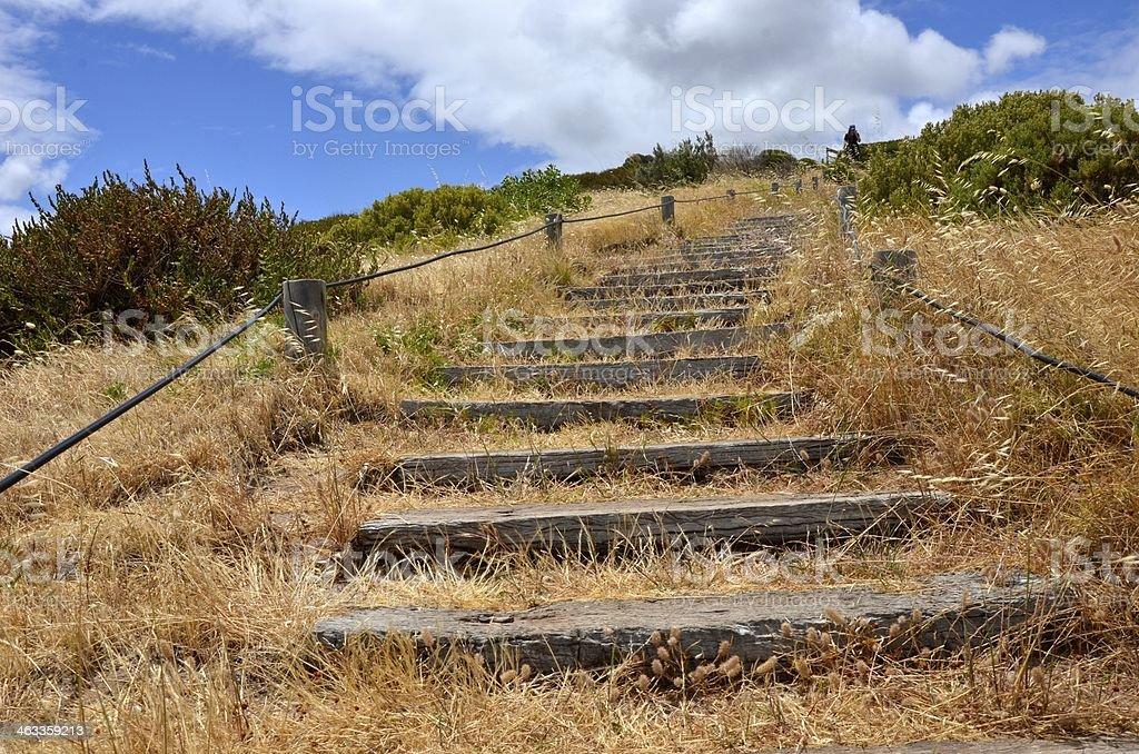 grassy steps Hallett Cove Beach stock photo