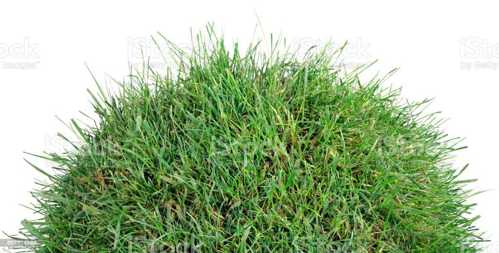 Grassy Tumulus Hill stock photo