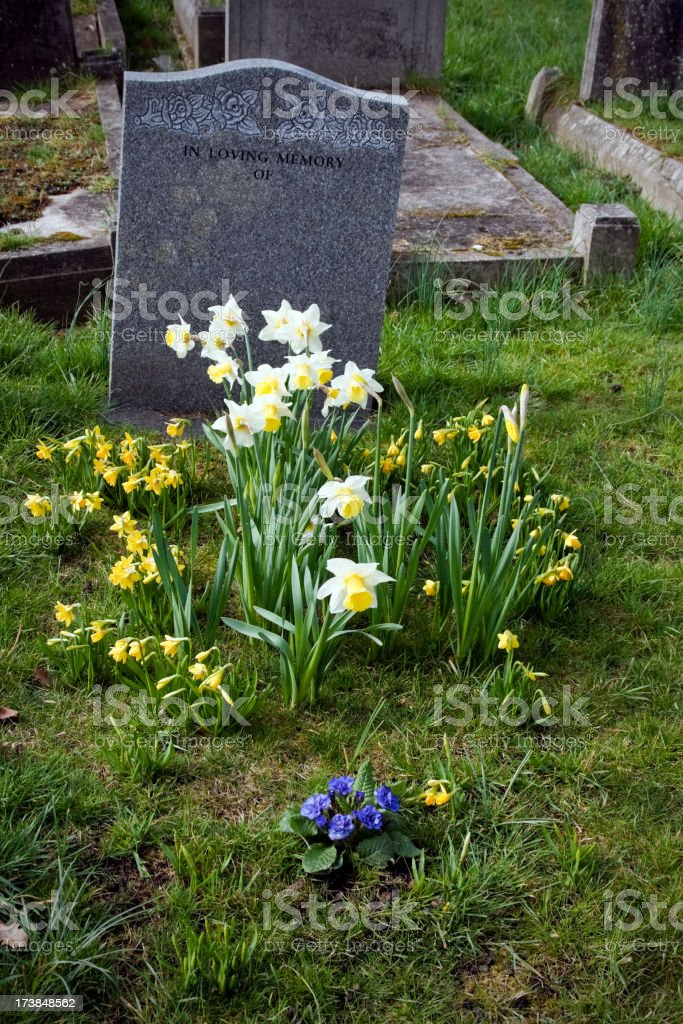 Grave and gravestones in a cemetery royalty-free stock photo