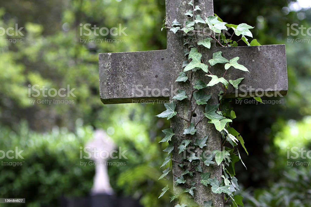 Grave cross with ivy stock photo