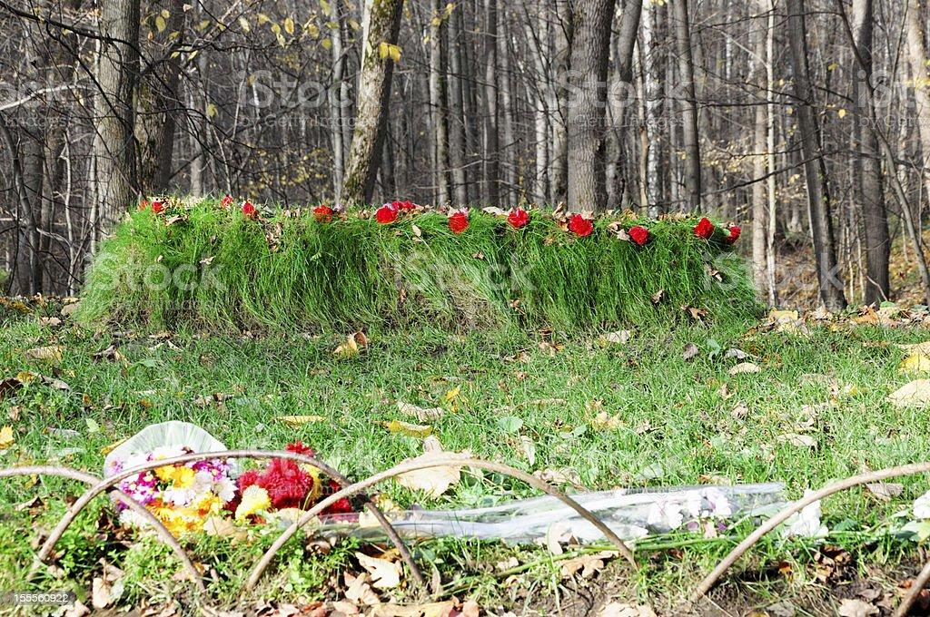 Grave of Leo Tolstoy Russia stock photo