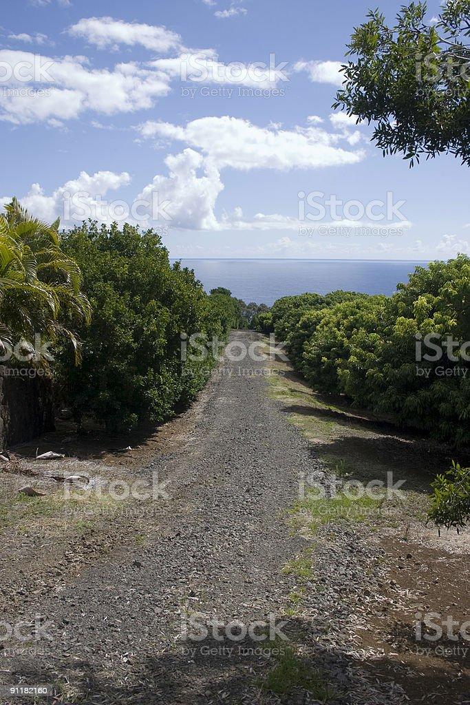 Gravel Farm Road stock photo