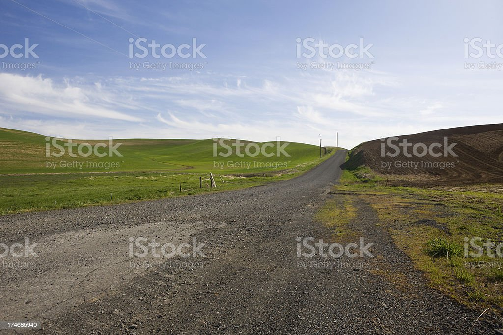 Gravel Road Between Two Fields stock photo