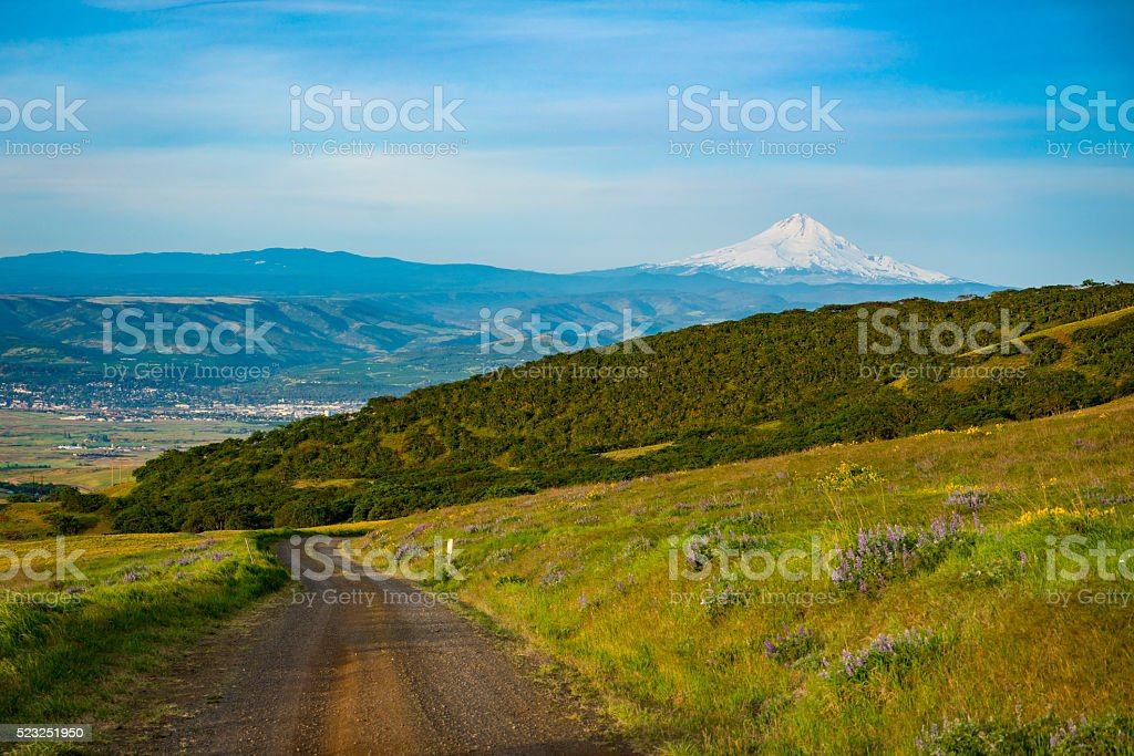 Gravel road in Eastern Washington stock photo