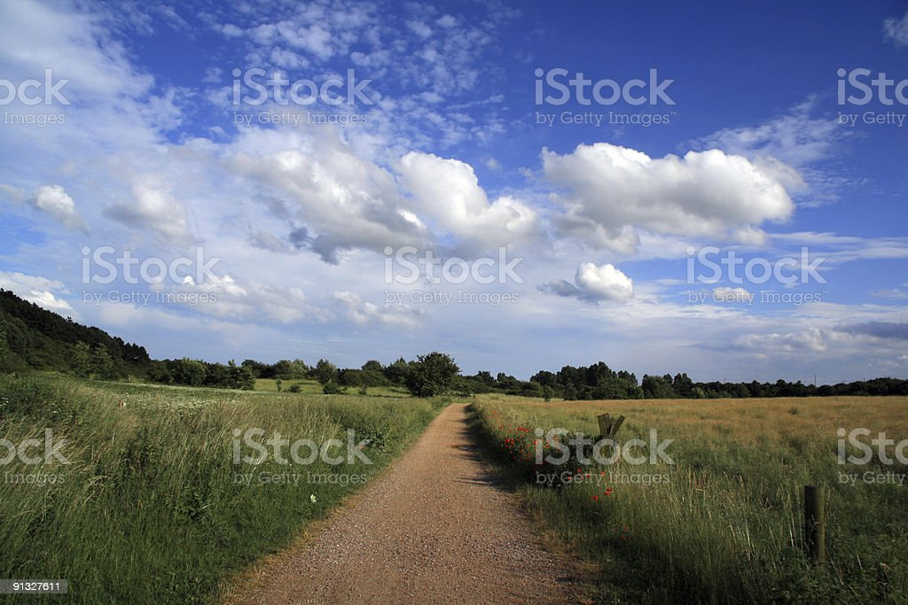 Gravel road through beautiful summer meadow and blue sky royalty-free stock photo