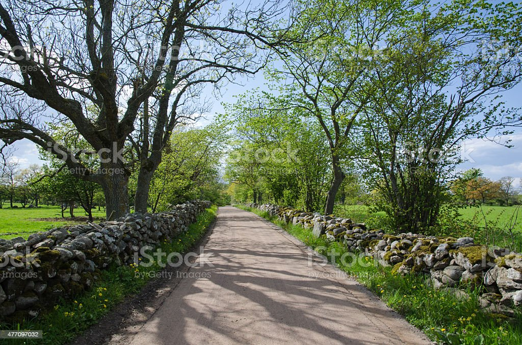 Gravel road with mossy stone walls stock photo