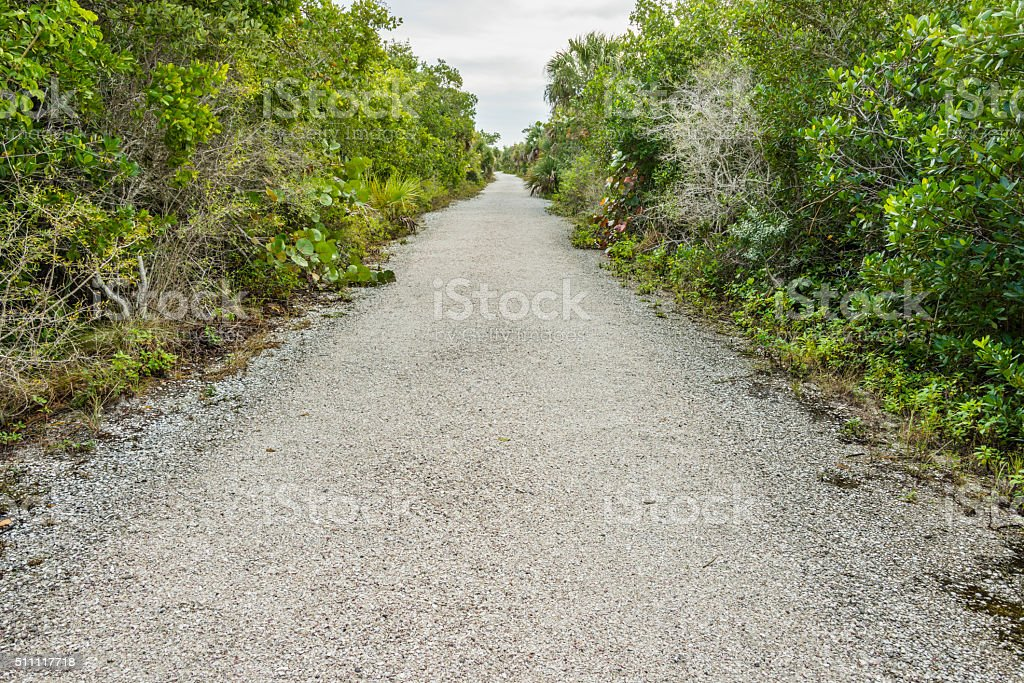 Gravel trail through a nature reserve stock photo