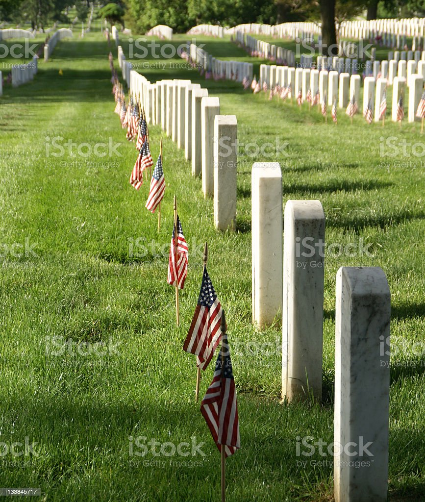 Graves and Flags at Arlington royalty-free stock photo