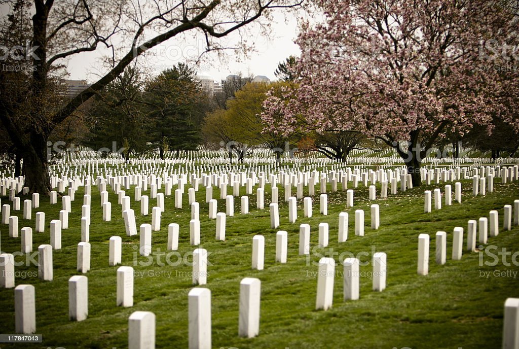 Graves at Arlington National Cemetery stock photo