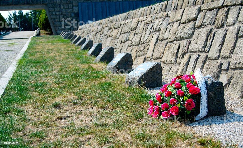 Graves at Slavin Memorial stock photo