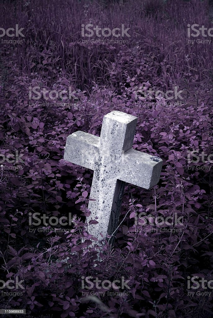 Gravestone in overgrown cemetary royalty-free stock photo
