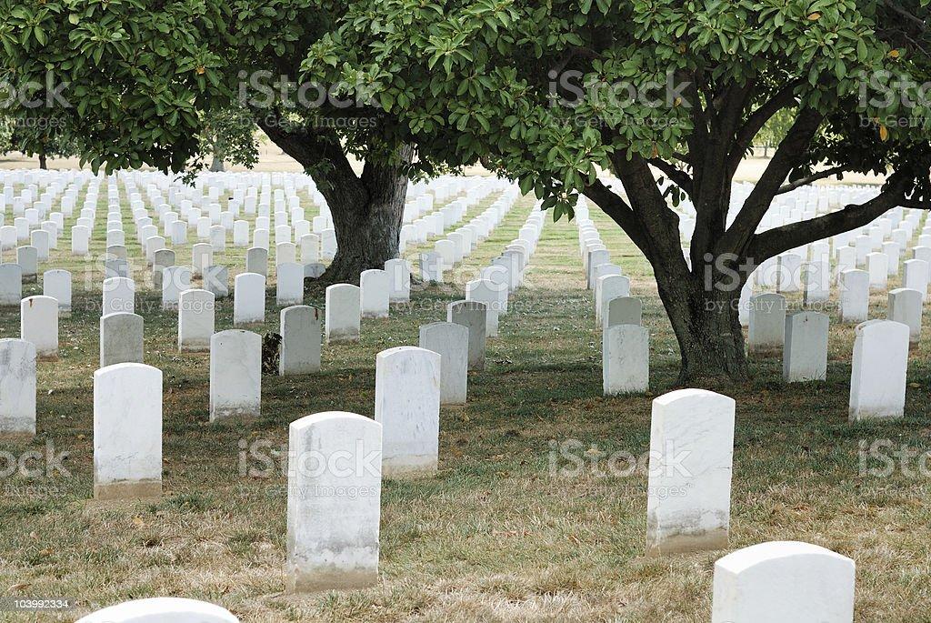 Gravestones at Arlington royalty-free stock photo