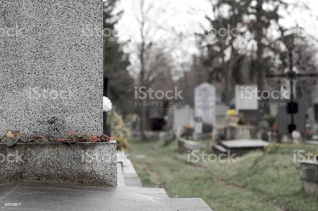Graveyard in Vienna with Close-Up on Tombstone stock photo
