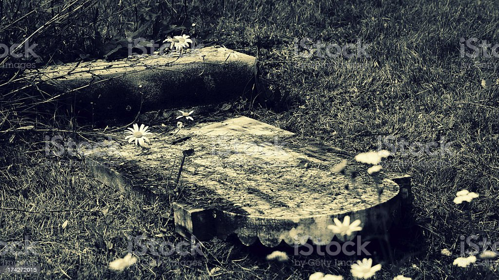 Graveyard with daisies - cross process royalty-free stock photo