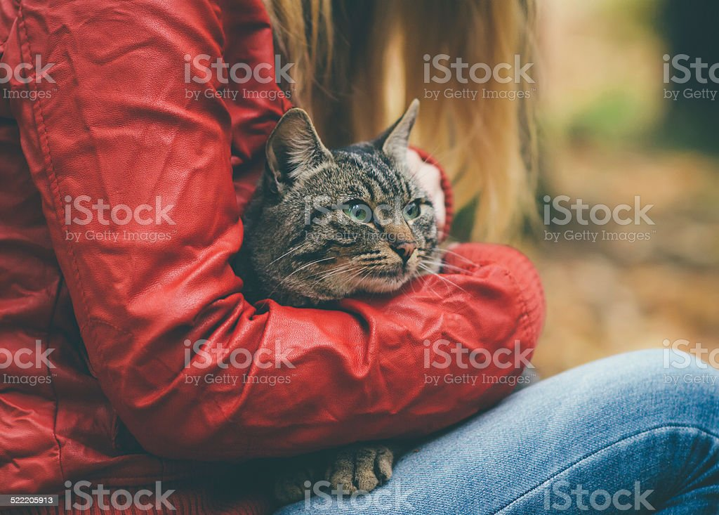 Gray Cat homeless and Woman hugging Outdoor Lifestyle stock photo