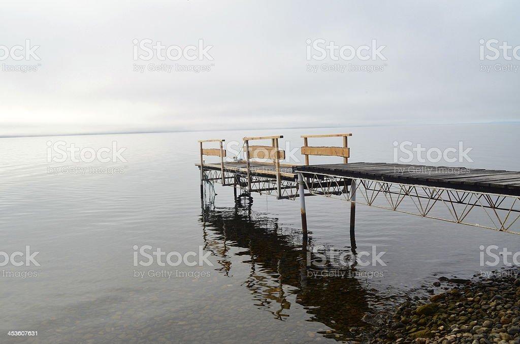Gray Tag in der Kälte lake Lizenzfreies stock-foto