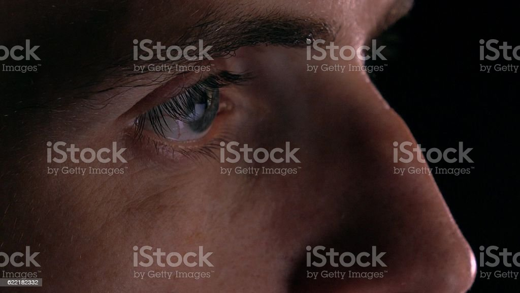 Gray eyes of intelligent young man using his tablet computer stock photo