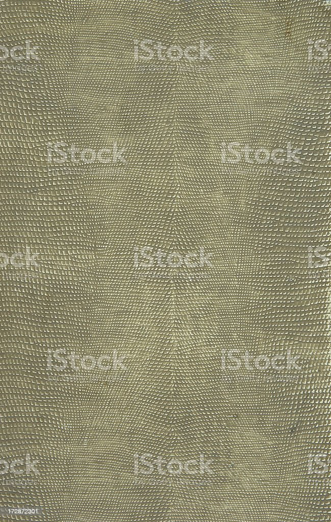 Gray Snakeskin Textured Background stock photo