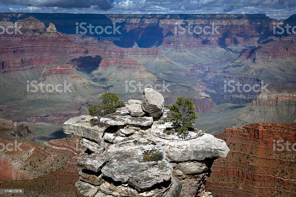 Gray Tower with Trees in Grand Canyon Arizona USA royalty-free stock photo