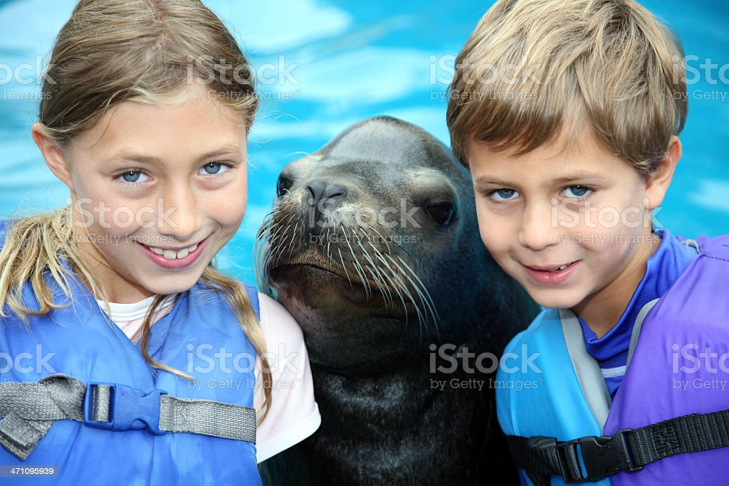 Great Adventure Kids in swimming pool playing Sea Lion Zoo stock photo