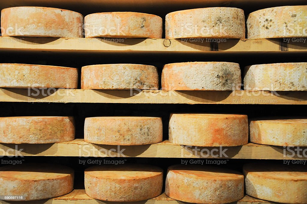 great and original forms of Fontina , typical Italian mountain c stock photo