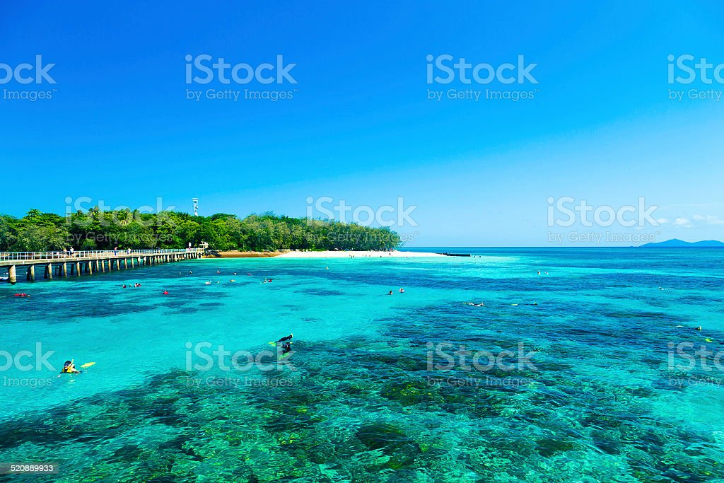 Great Barrier Reef, Queensland, Australia stock photo