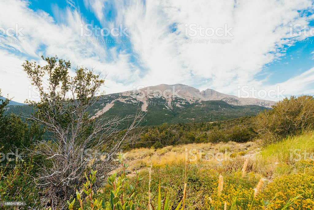 Great Basin National Park Mather Overlook Mountain Landscape Nevada USA stock photo