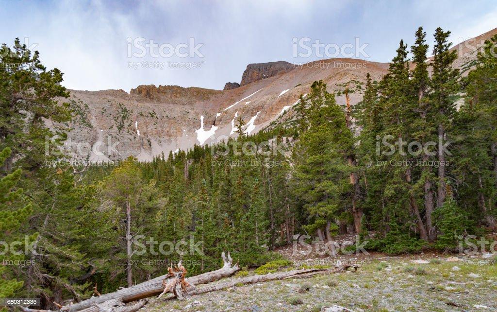 Great Basin National Park, Nevada stock photo