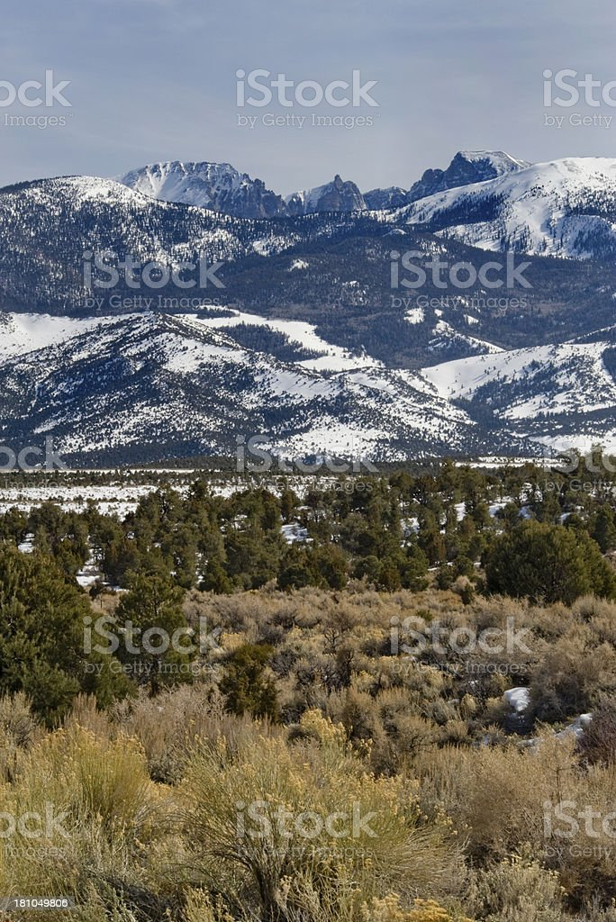 Great Basin National Park stock photo