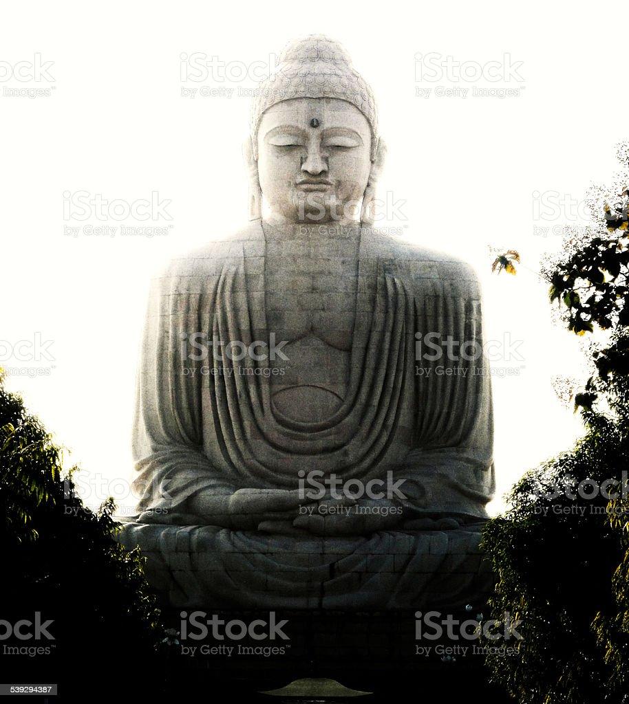Great Buddha statue in Bodhgaya stock photo