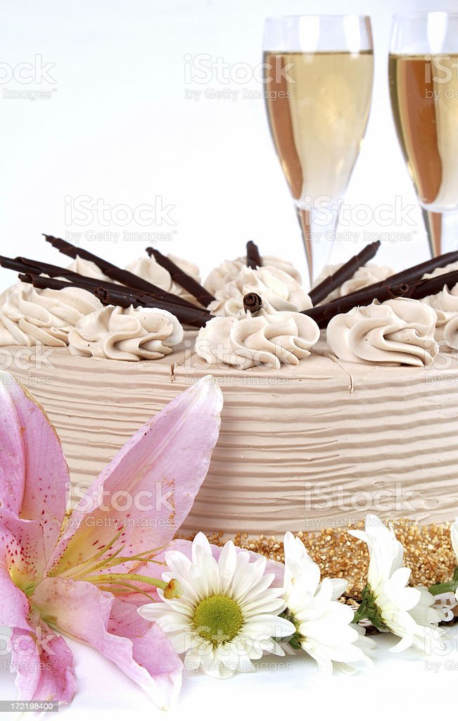 Great Chocolate Cake royalty-free stock photo