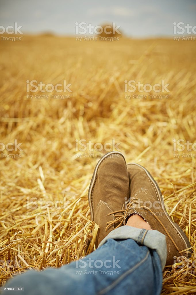 Great countryside view with dry hey and man's legs stock photo