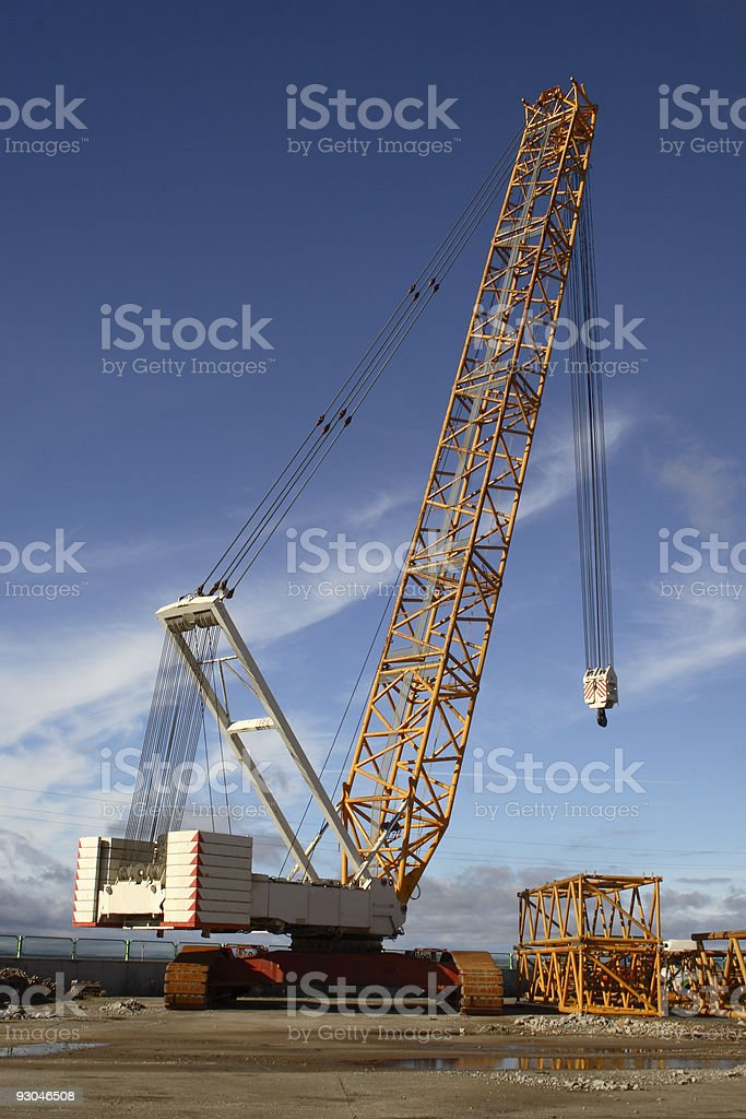 Great crane stock photo