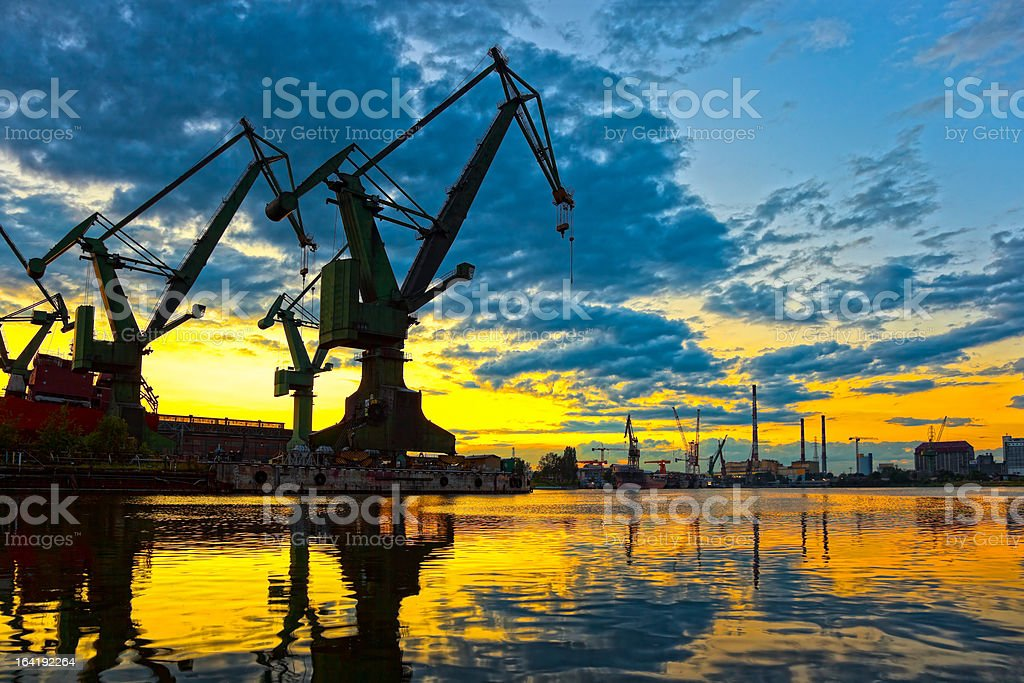 Great Cranes royalty-free stock photo