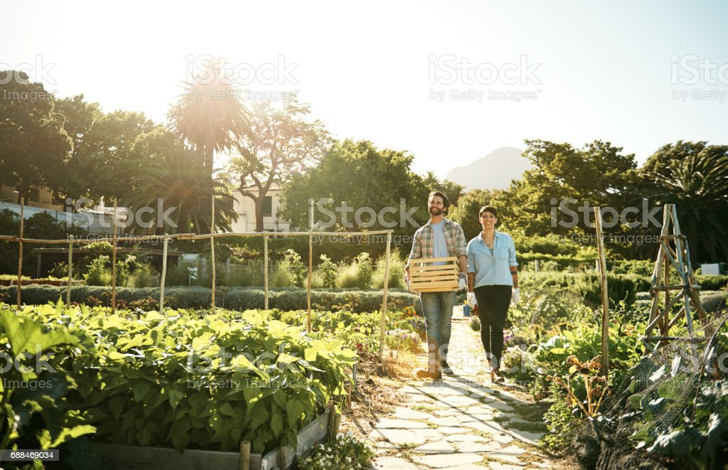 Great farmers always keep sustainability on their minds stock photo