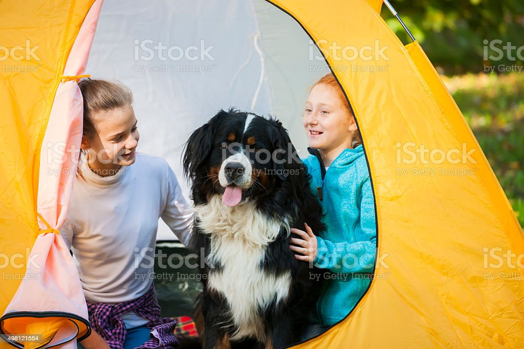 Great friendship at camp stock photo