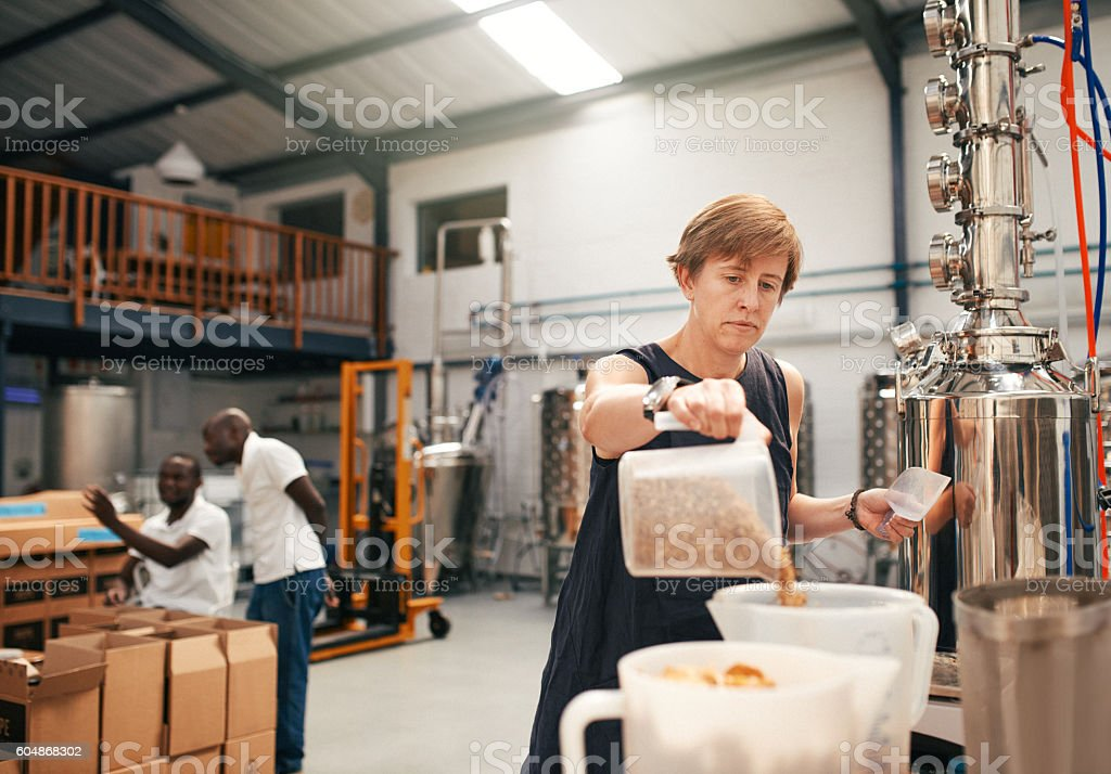 Great gin begins with great barley stock photo