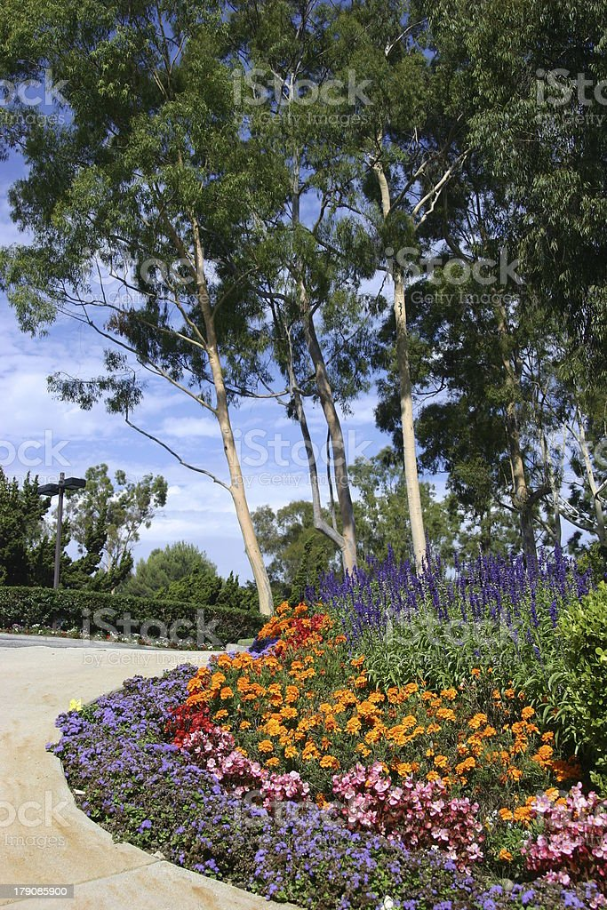 Great landscaping stock photo