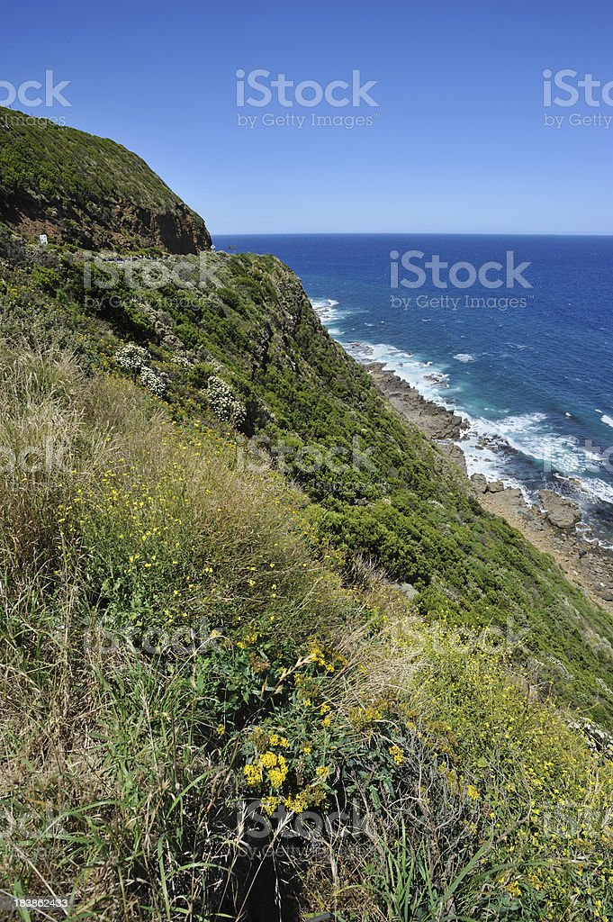 Great Ocean Road, Victoria,Australia royalty-free stock photo