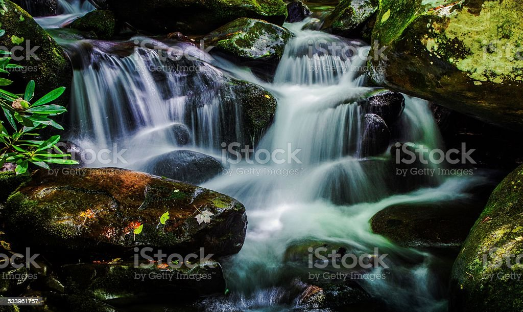Great Smoky Mountain Spring stock photo