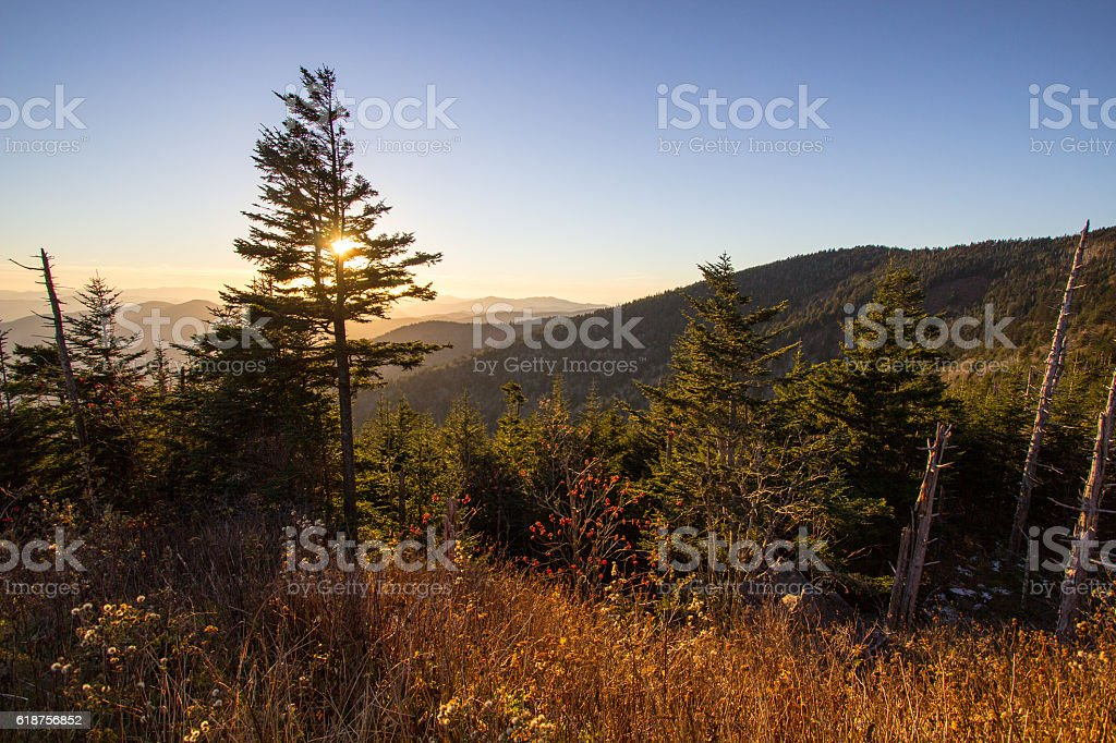 Great Smoky Mountains Clingman's Dome Overlook stock photo