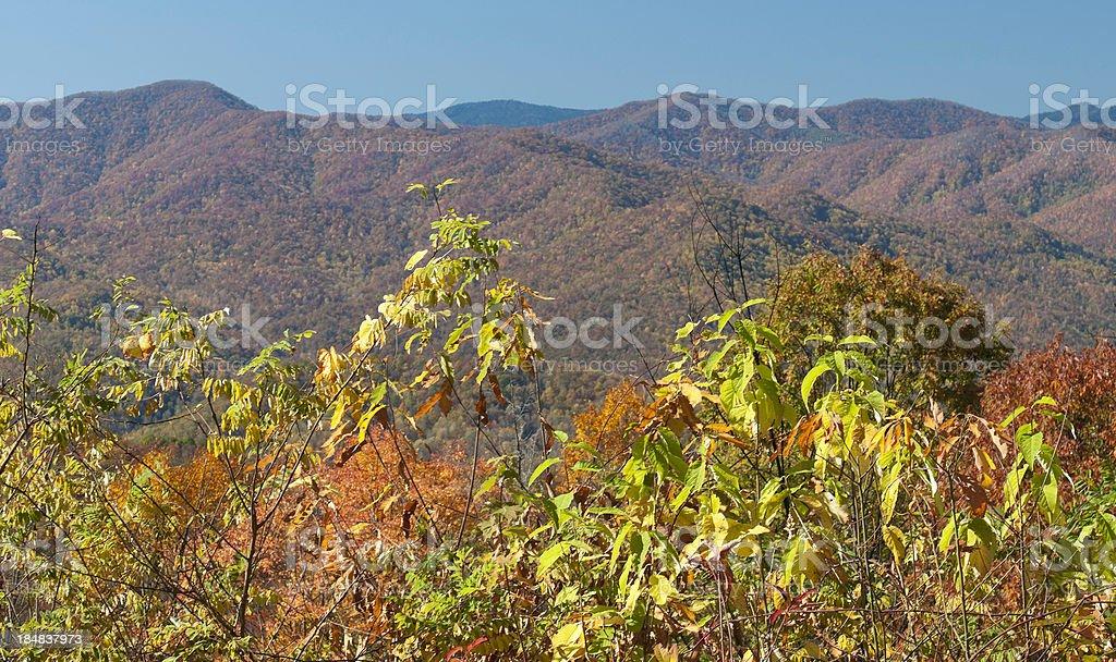Great Smoky Mountains, fall colours, North Carolina, USA stock photo