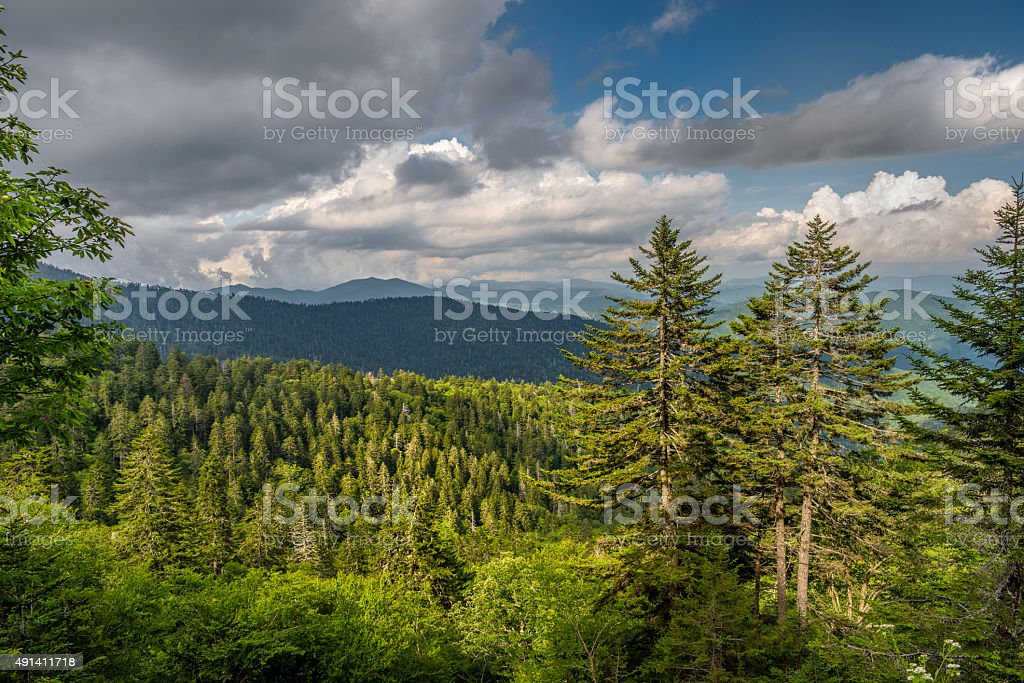 Great Smoky Mountains in the Appalachian Chain stock photo