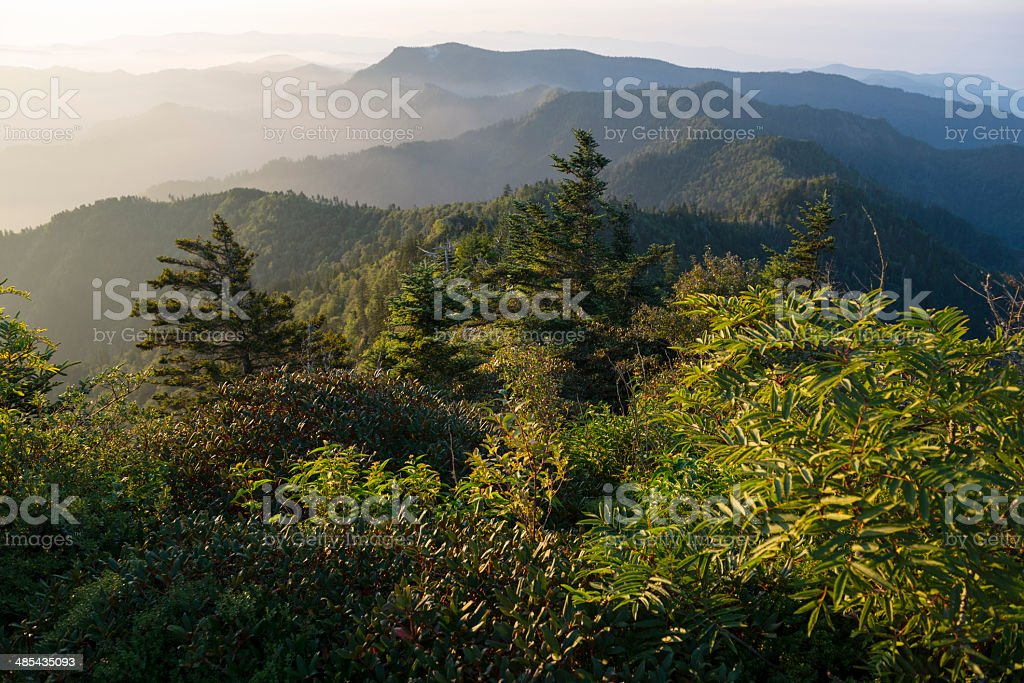 Great Smoky Mountains National Park landscape view royalty-free stock photo