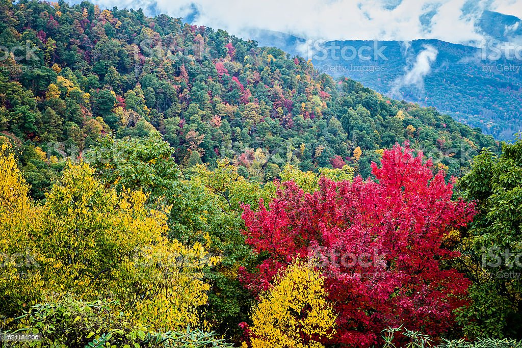 Great Smoky Mountains National Park stock photo