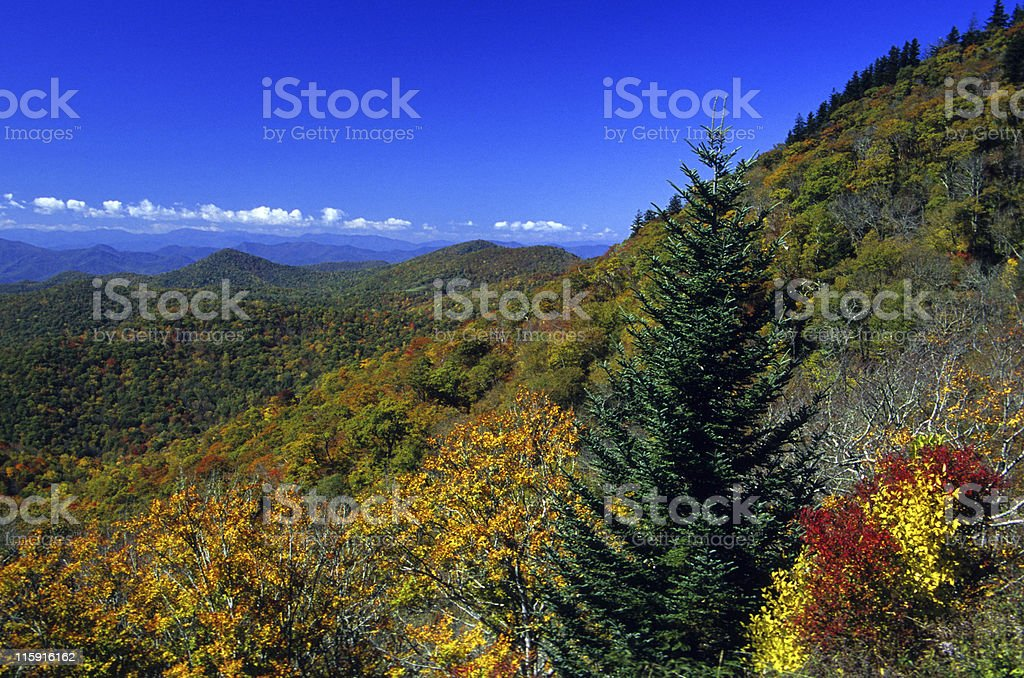 Great Smoky Mountains National Park, Tennessee, USA royalty-free stock photo