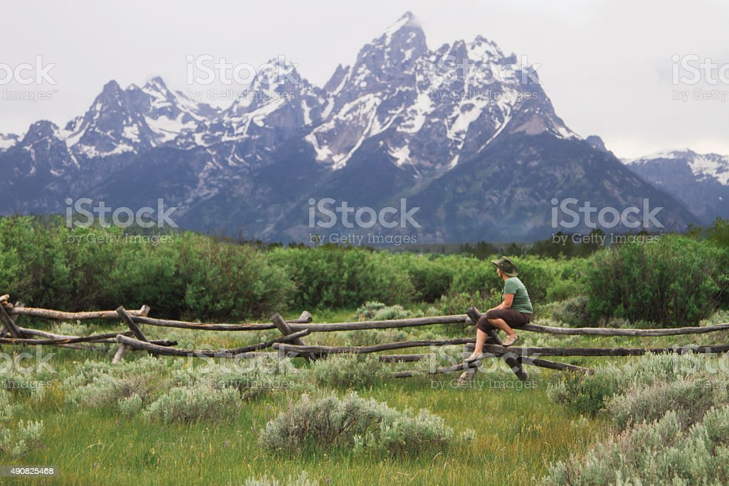 Great Teton mountain view stock photo